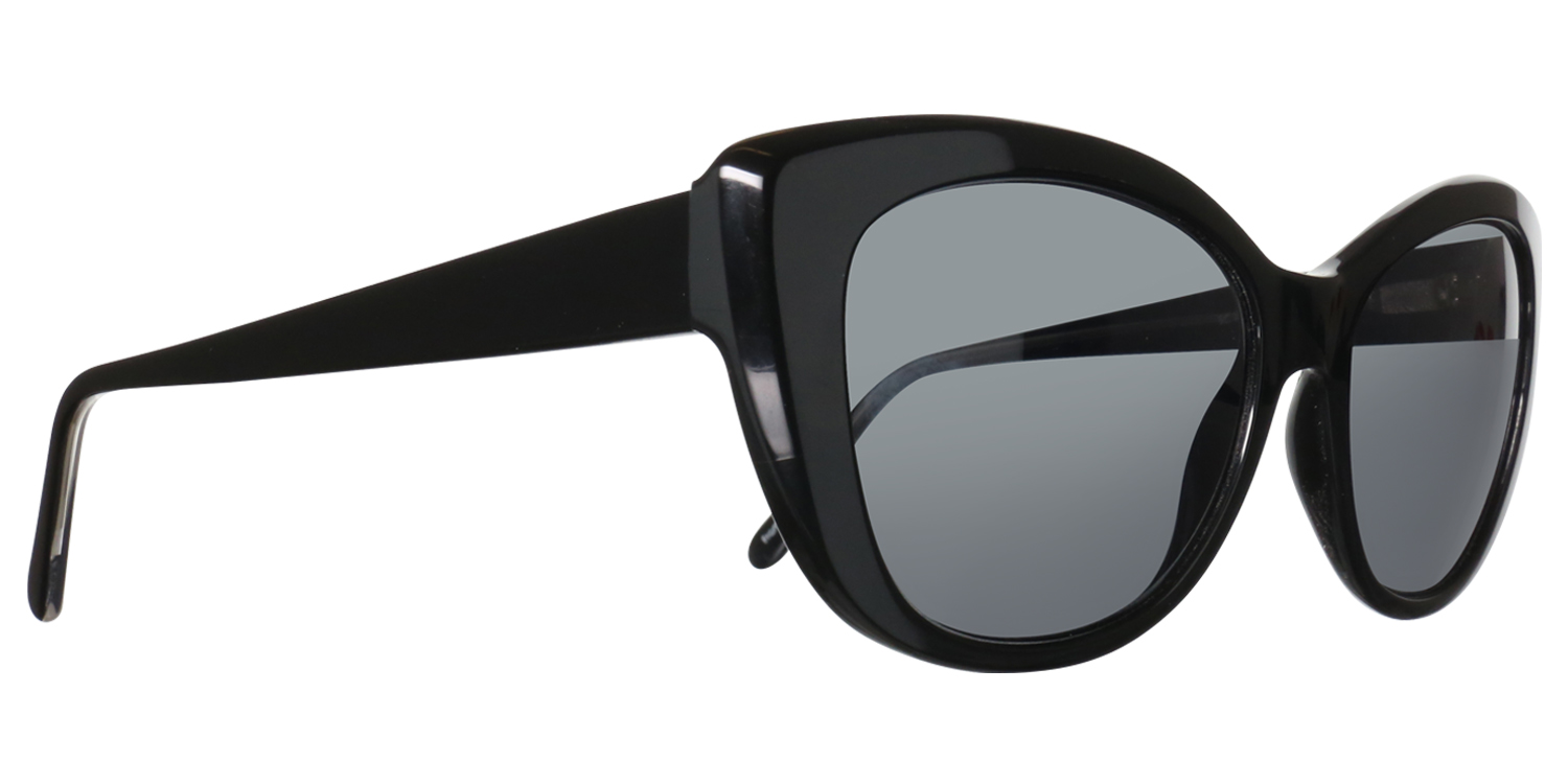 Sunglass Collection 100
